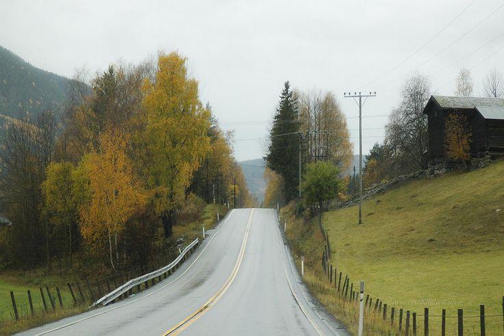 Carreteras noruegas.