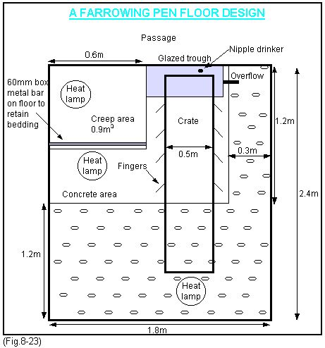 Farrowing House Design - Managing Pig Health and Treating Pig Dieases on ThePigSite.com - The Pig Site
