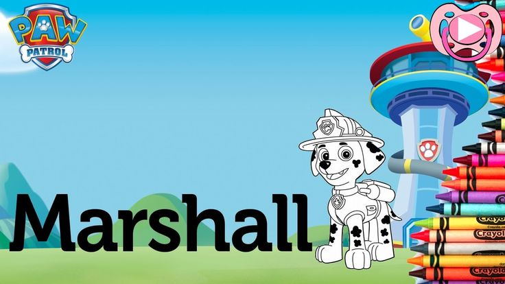 Characters from Paw Patrol 🐾  Coloring Marshall