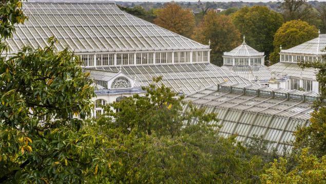 5af7345e1b8f906f0af584bed26e39c9 - Property For Sale Kew Gardens London