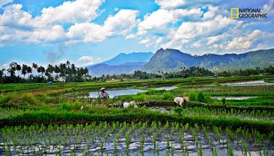 Desa Wisata Rantih Talawi Sawahlunto Sumatera Barat - GWI Indonesia Banget