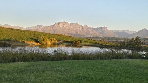 Wine Estate in Stellenbosch