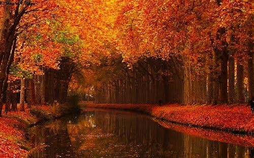 I love fall, I love Canal Du Midi..