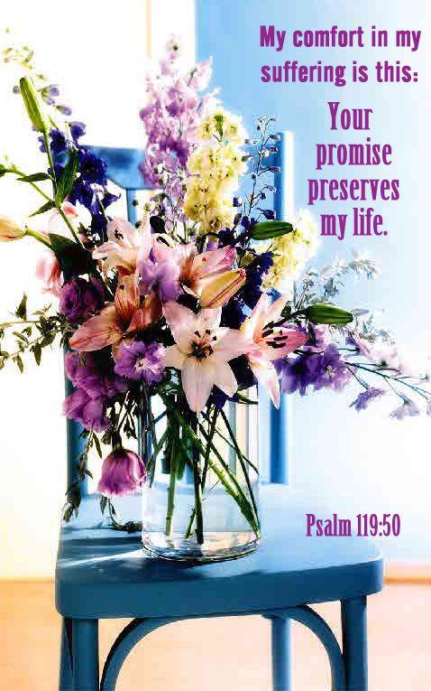 Psalm 119:50