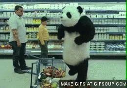 Male Giant Panda Weight Gif #7391 - Funny Panda Gifs| Funny Gifs| Panda Gifs
