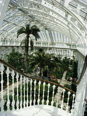 This photo shows how big the green houses can be. The palm house is definitely an amazing experience.The one palm tree stands out but makes you realize how tall the house is.