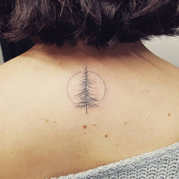 Hand poked pine tree tattoo on the upper back.