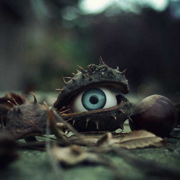 curious & macabre by Simon Clarke, via Behance