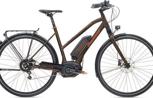 E-Bike Elan Elite ° Diamant eBikes für Sport