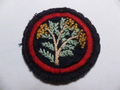 Vintage GIRL GUIDE or Ranger Guide patrol emblem | eBay