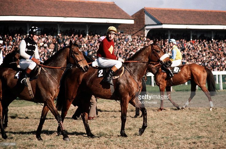 Sport, Horse-Racing, The Grand National, AintreeRacecourse, England, 1978, Red Rum pictured on the left (winner of the 1987 national) pictured on the right