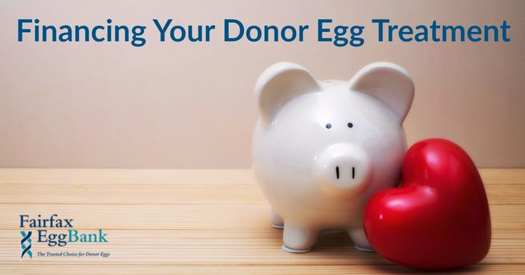 Tips and Resources for Financing and Paying For Donor Egg IVF Infertility Treatment