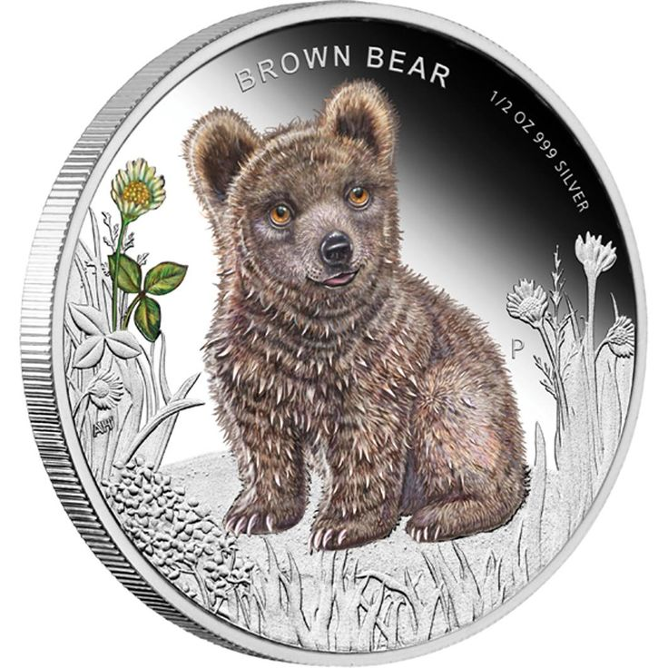 Forest Babies - Brown Bear 2013 1/2oz Silver Proof Coin | The coin's reverse depicts an irresistible coloured image of a beautiful baby Brown Bear headed by the inscription BROWN BEAR.