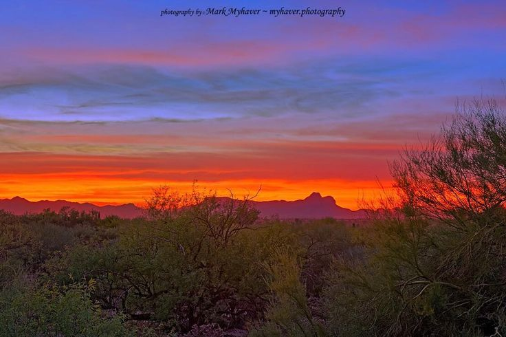 Tucson Sunset h55 photography by Mark Myhaver  http://ift.tt/2i1awtT  Tucson Sunset h55 presents the sun setting over the Tucson Mountains viewed from Oro Valley with the Sonoran Desert vegetation in the foreground.  Oro Valley Arizona  Copyright Mark E Myhaver - All rights reserved. Use without permission prohibited by law and prevented by your integrity. #myhaverphotography #scenic #southwest #arizona #sunset #twilight #desertlife #mountains