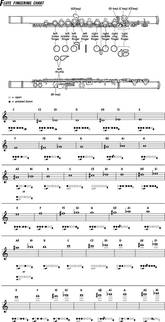 Best Music Fingering Charts Images On   Music