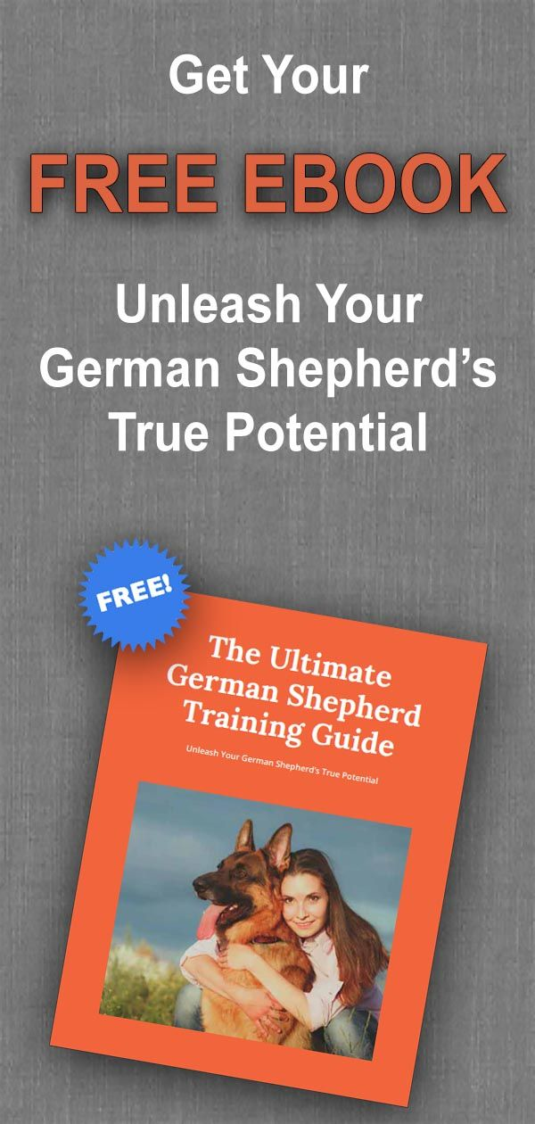 The Ultimate German Shepherd Training Guide Download Now For Free