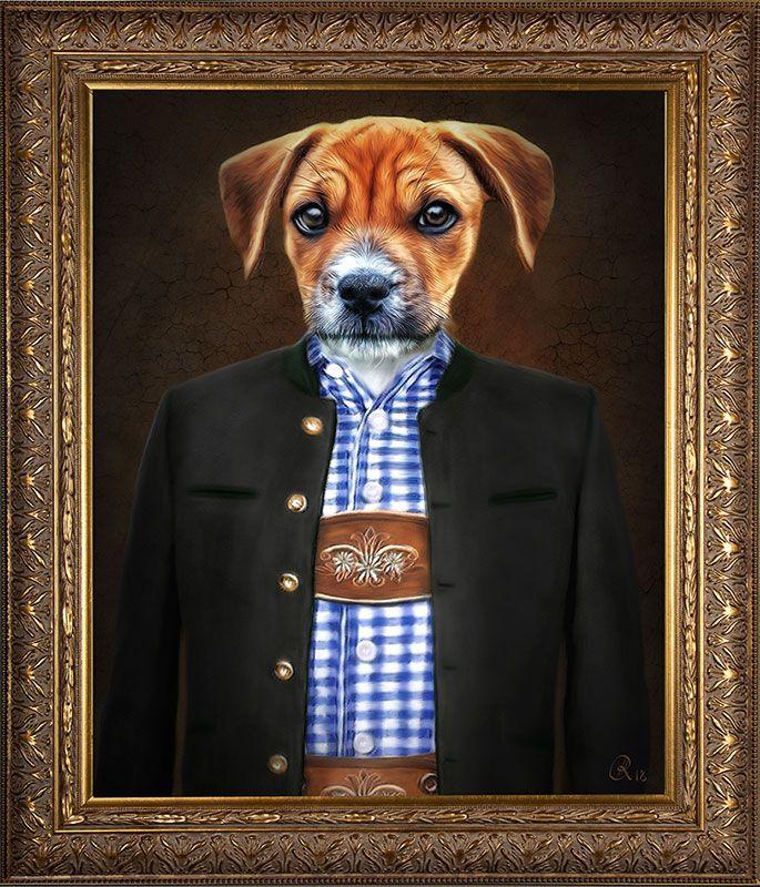 Hund In Kleidung Hund Im Anzug Hund In Uniform Hundekleidung Kleidung Fur Hunde Haustierfotos Hund Portraits