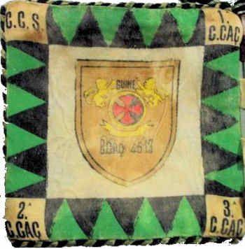 Batalhão de Caçadores 4513 Guiné