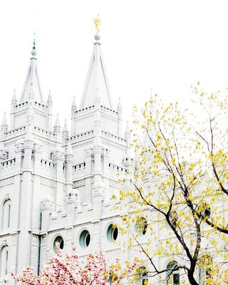 Awesome photography prints, including LDS temples