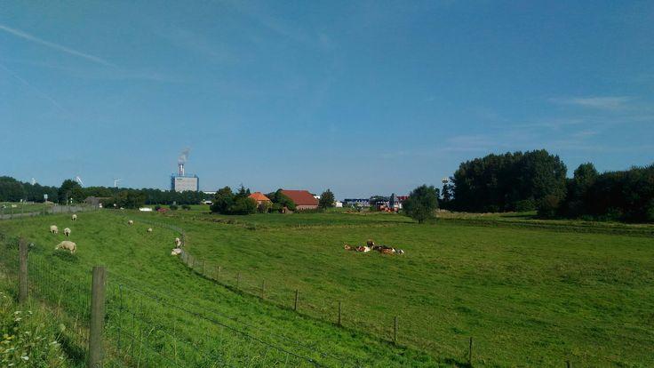 Farm boerderij
