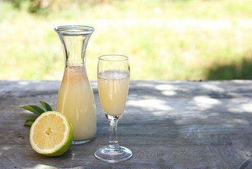 Un dejeuner de soleil: Sherbet ou sharbat au citron et cannelle: la limonade de l'Orient :-)