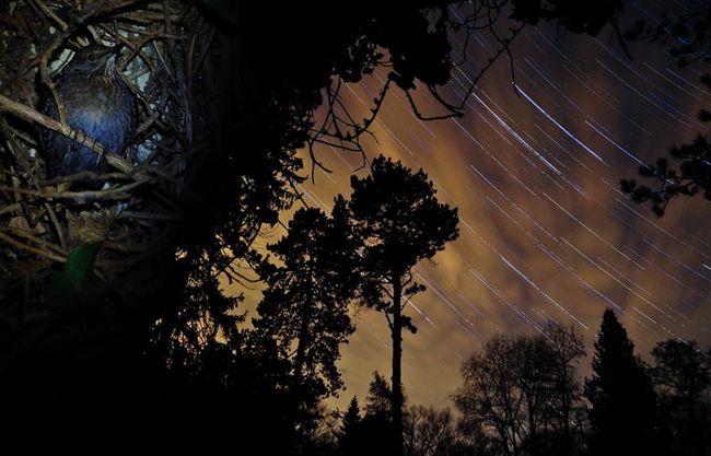 Fókuszban az asztrofotós: Potyó Imre - National Geographic