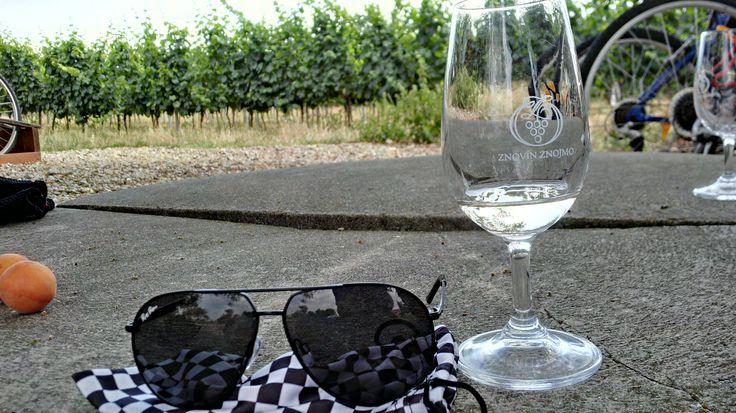Zážitek z návštěvy vinic :)) Znojmo