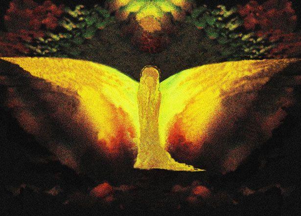 JESENNÁ ENERGO-BOMBA: Objímanie stromov :: Svet zdravej spirituality