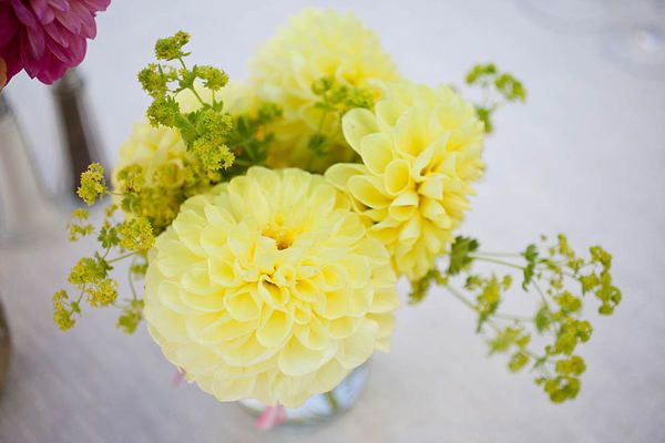 yellow table centerpieces: Darling Dahlias, Lemony Dahlias, Wedding, Beautiful Flowers, Flower Vases, Delightful Dahlias, Photo, Fun Events, Bright Colors