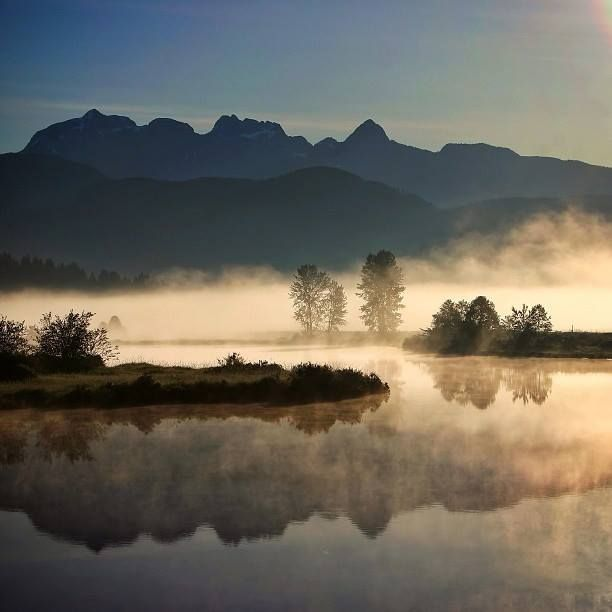 Burning off the Fog on the Alouette River, Pitt Meadows