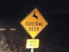 Funny Signs Are Everywhere If You Look Good Enough - 26 Pics