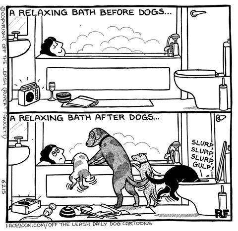 Copyright Off The Leash/Rupert Fawcett