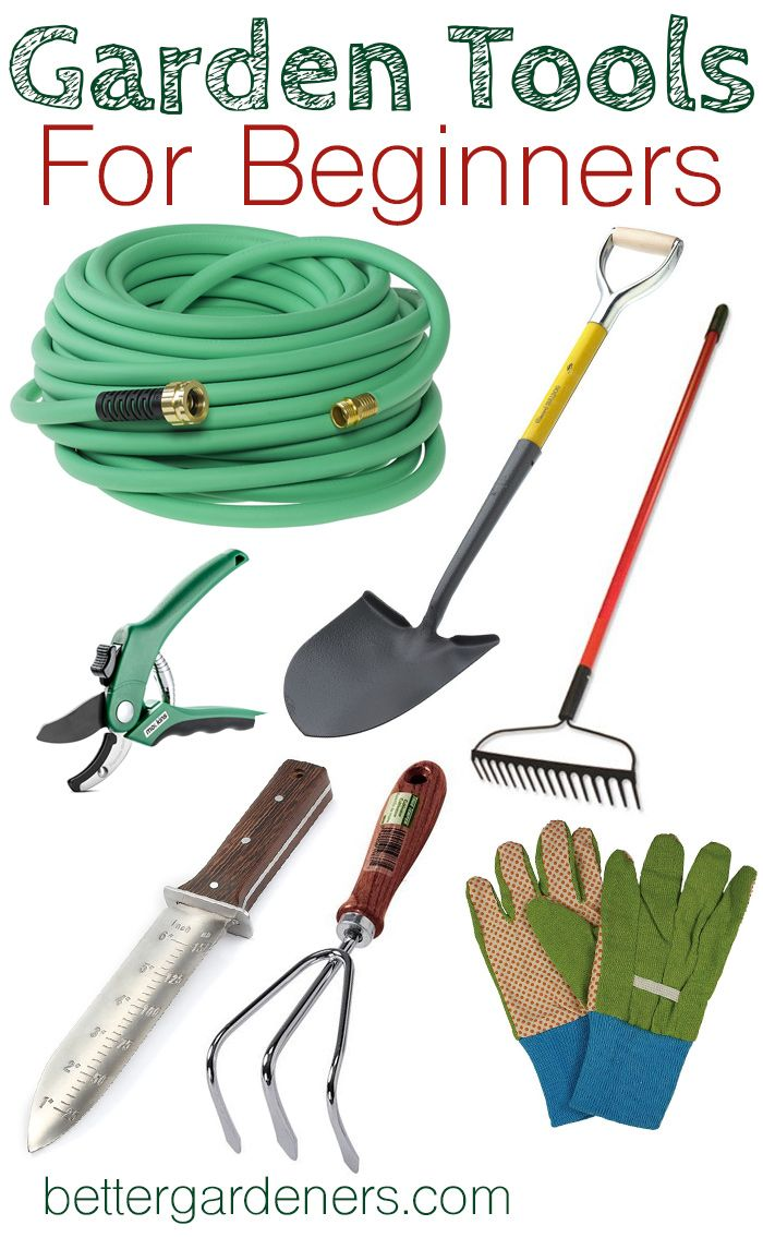 5afddcad07f7d077068b22eeb62fafc3 - What Do You Need To Be A Gardener