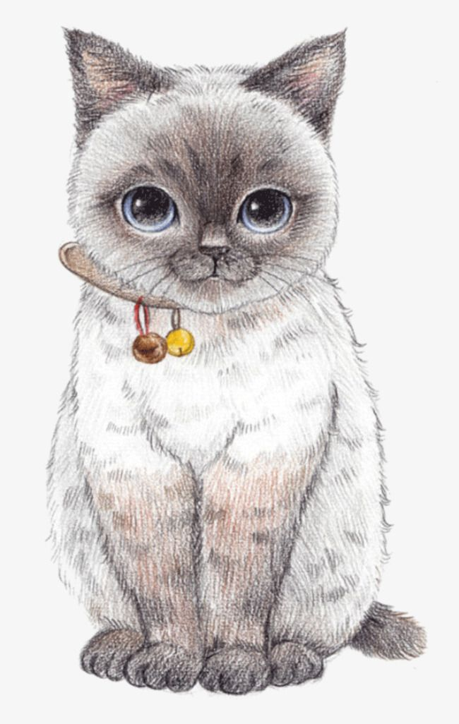 Hand Painted Cartoon Cat Cartoon Clipart Cat Clipart Hand Painted Png Transparent Clipart Image And Psd File For Free Download Cute Animal Drawings Cat Art Animal Drawings