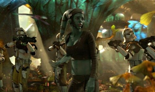 Aayla Secura Assassination. Her death was felt by Grand Master Yoda on Kashyyyk, and witnessed in a Force vision by Master Depa Billaba and Padawan Caleb Dume on Kaller.