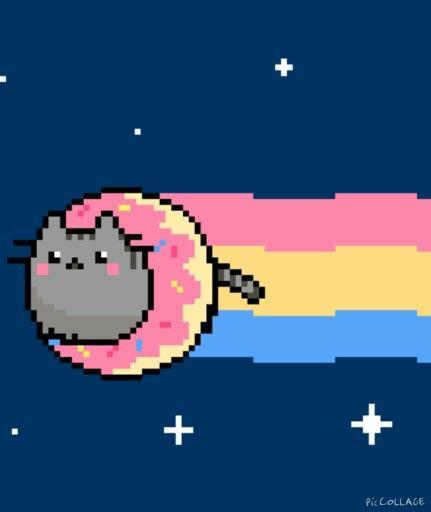 Koto - pączek