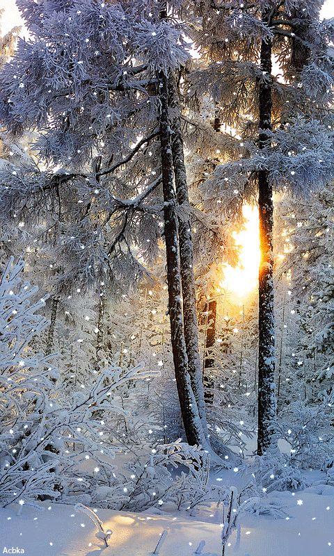 Красивые картинки на зима анимация