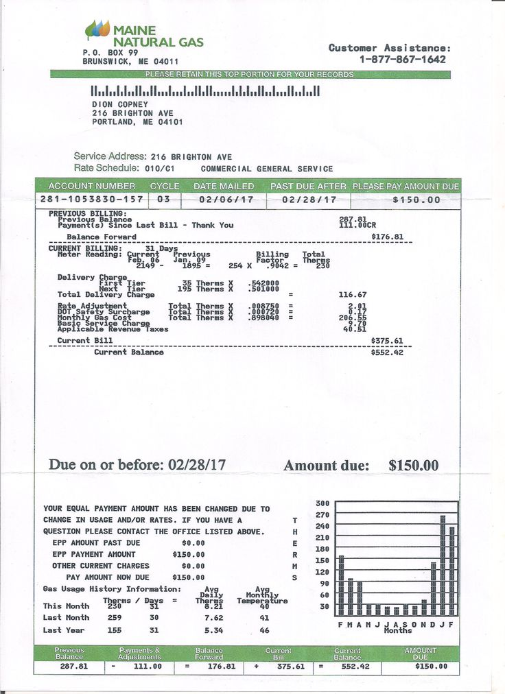 Utility, Bill, Statement, Monthly, Custom, Proof of ...