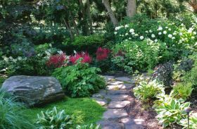 """""""A sense of discovery"""" - the winding path and irregular planting makes for a peaceful secret garden"""