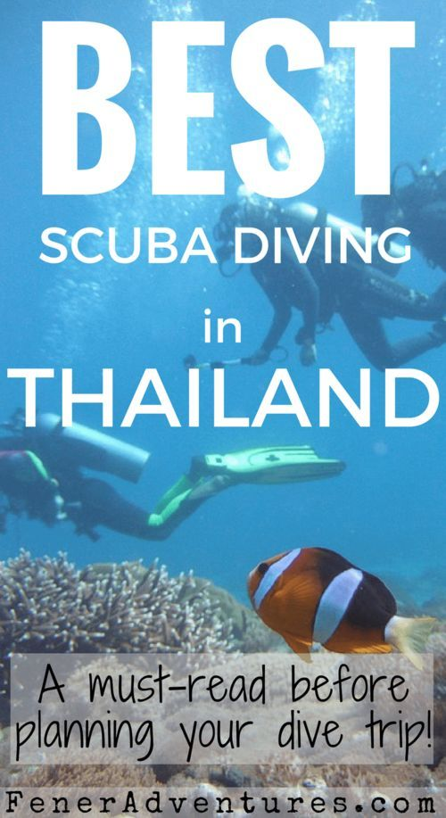 Best SCUBA Diving in Thailand. Read this article before planning your trip! ~~~ www.FenerAdventures.com ~~~ Dive sites Thailand | Learn to SCUBA Dive | Where to dive Thailand | Things to do | Asia | Budget Travel Ideas | Cheap diving | Affordable Vacation | Adventure Ideas | Exotic SCUBA Diving | Dive with Manta Rays