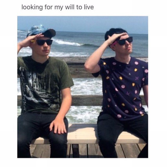 But I'm looking at my will to live right now. Dan and Phil are the reason I'm alive.