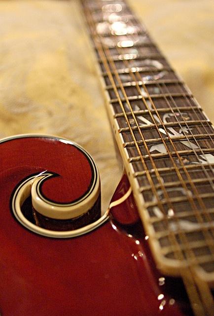 Beautiful Dragonfly mandolin