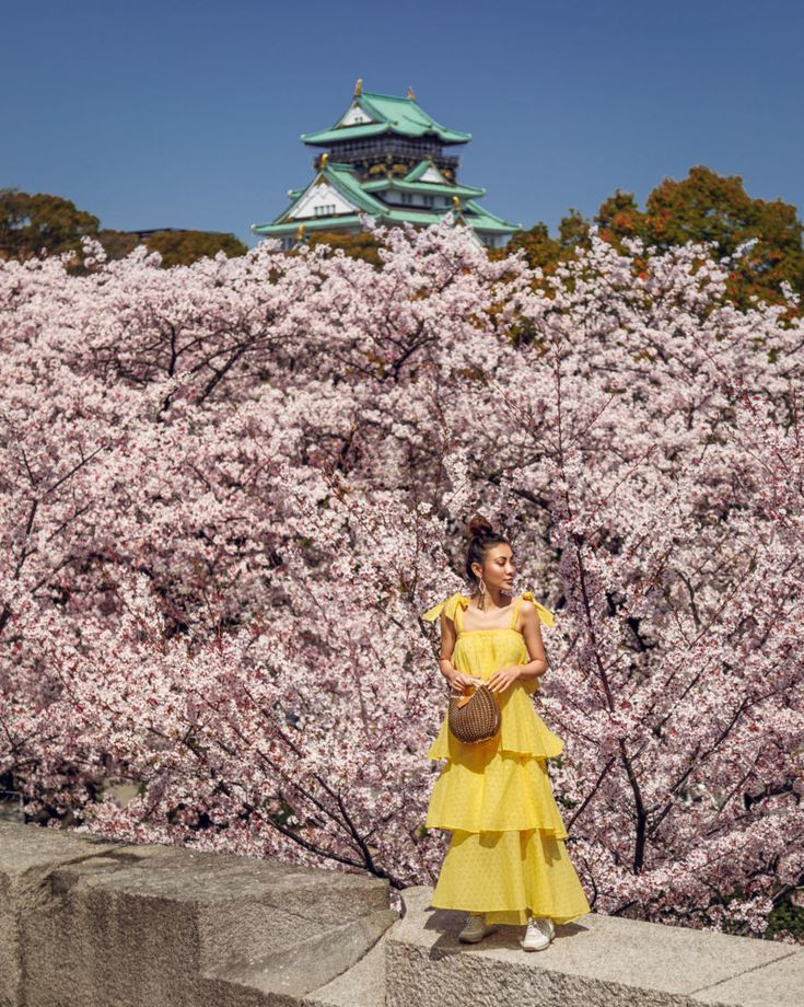 The Top 7 Places In Japan To See Cherry Blossom Booking Com Beautiful Streets Cherry Blossom Festival Nature