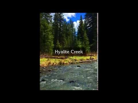 Spring Fly Fishing on Hyalite Creek...One of many perks to living in Bozeman is being within minutes of Hyalite Canyon...home to excellent fly fishing and hiking opportunities.