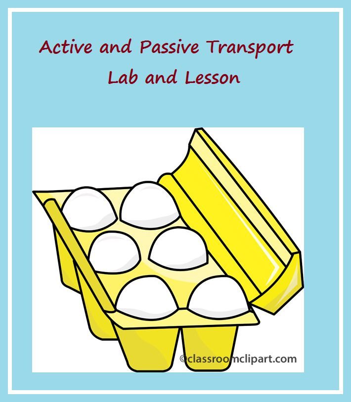 Active and Passive Transport Lab and Lesson
