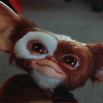 The Full List of Rules for Taking Care of Gizmo from 'Gremlins'