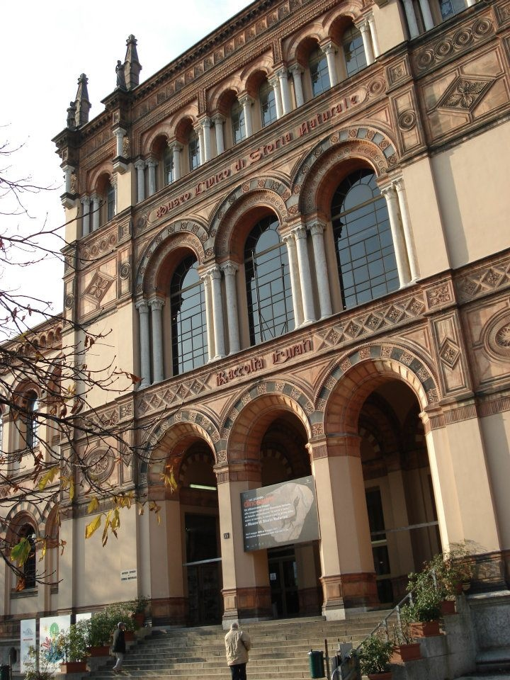 Museo Civico di Storia Naturale a Milano.