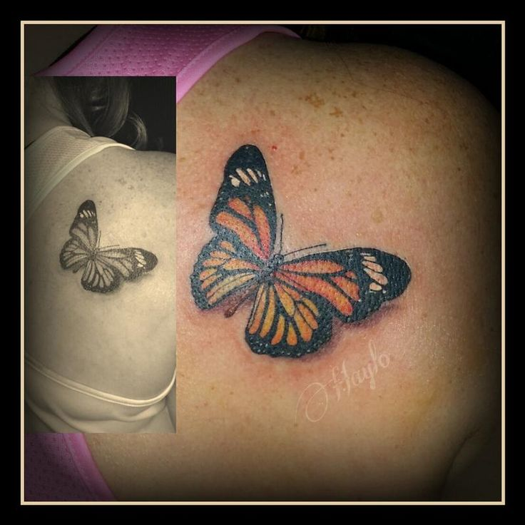 25 Great Ideas About Realistic Butterfly Tattoo On: 25+ Best Ideas About Realistic Butterfly Tattoo On