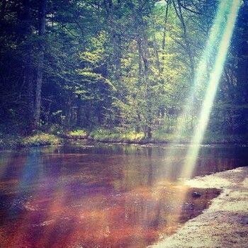 田代池は時間帯によって刻一刻と姿を変えてゆきます。樹々の間から差し込む光芒が、田代池の神秘的な姿を一層と引き立てています。