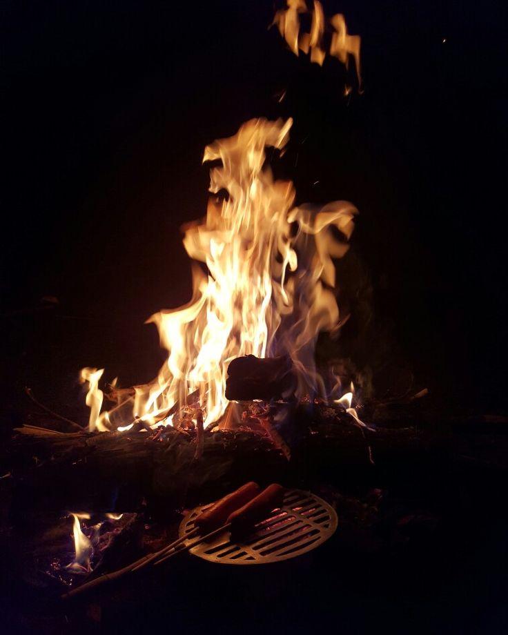 Fogata fuego
